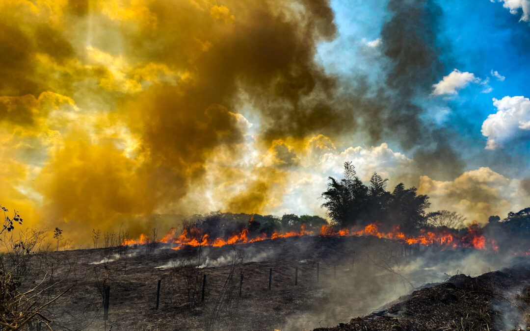 IPCC Climate Report: National Leaders Must Act on Climate Crisis to Ensure Human Health and Safety