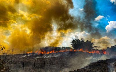 Informe del IPCC sobre el clima: los líderes nacionales deben actuar sobre la crisis climática para garantizar la salud y la seguridad humanas