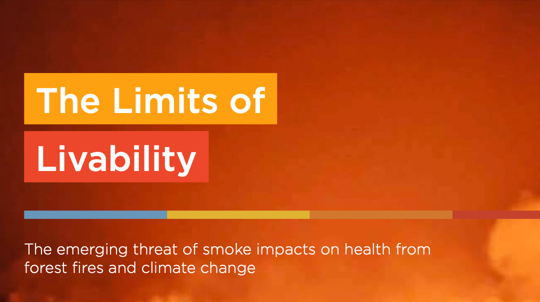 Forest Fire Smoke Driving Increased Health Risks from Air Pollution Worldwide – Report